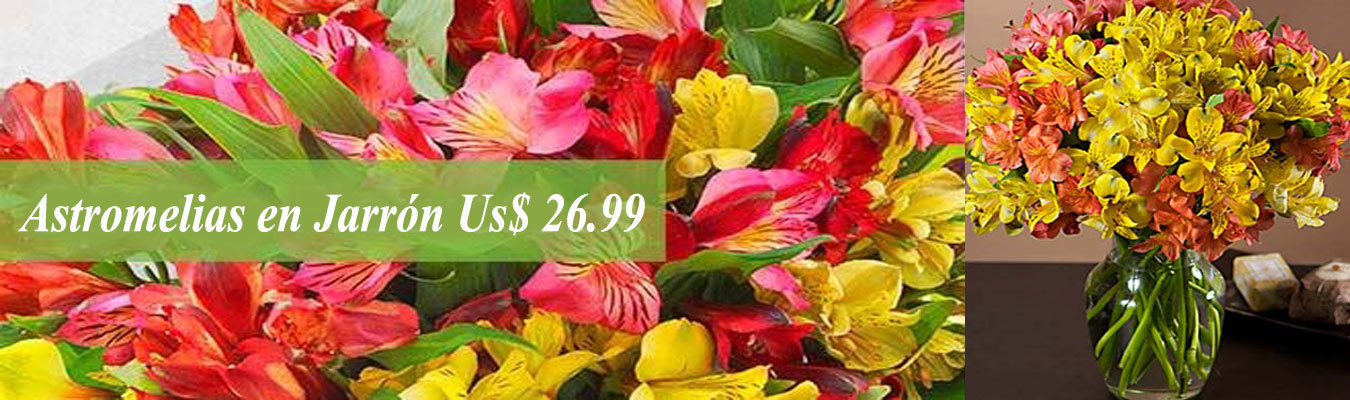 Ramo de Rosas y Torta Helada , Us$ 39.99